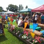 Summer fair 1